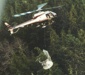 Pilots gain quick access to selected trees.